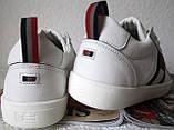 Tommy Hilfiger кожаные белые кеды! Туфли мужские кроссовки в стиле Томми Хилфигер, фото 4