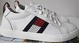 Tommy Hilfiger кожаные белые кеды! Туфли мужские кроссовки в стиле Томми Хилфигер, фото 2