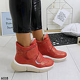 Ботинки_А6018 размеры  36,38, фото 3