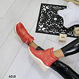 Ботинки_А6018 размеры  36,38, фото 5