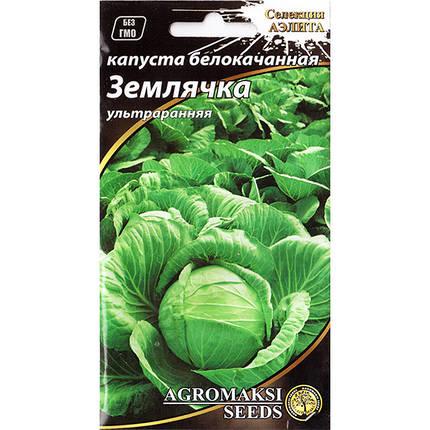 """Насіння капусти ультраранньої, білокачанної """"Землячка"""" (1 р) від Agromaksi seeds, фото 2"""