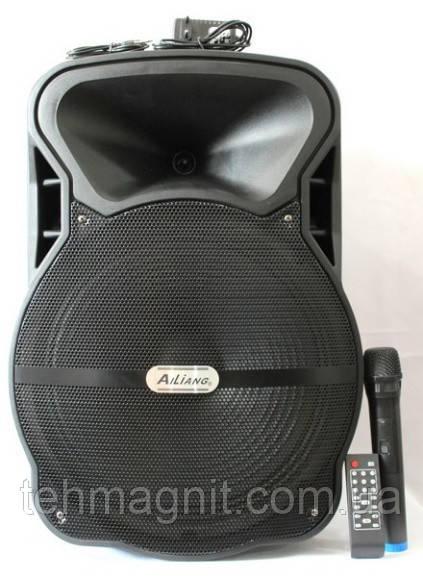 Автономная акустика  колонка  USBFM-AJ15DK-DT