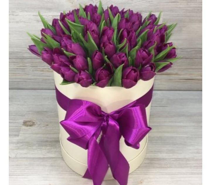 Тюльпаны сорта Династия опт,розница
