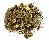 Эхинацея пурпурная корень 100 грамм, фото 1