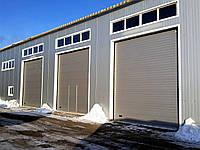 Промышленные секционные ворота doorhan isd01 4000х4000 мм