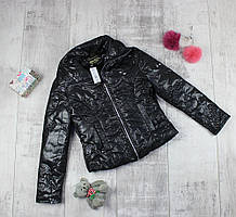 Курточка дитяча демежсезоная для дівчинки Рокі