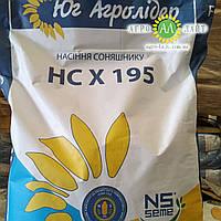 Семена подсолнечника НС Адмирал (НС Х 195) , фото 1