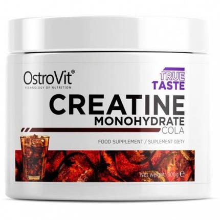 Креатин OstroVit Creatine 300 g, фото 2