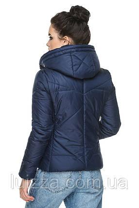 Куртка женская  короткая 44-54р, фото 2