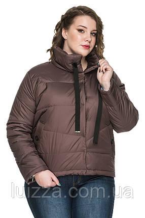 Стильная женская куртка больших размеров 50-58р, фото 2