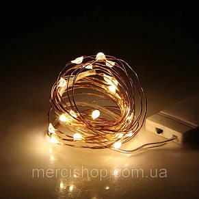 Светодиодная гирлянда на медной проволоке 2м(20 светодиодов), на батарейках, фото 2