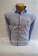 Рубашка мужская (р. M - 3XL) купить оптом от производителя