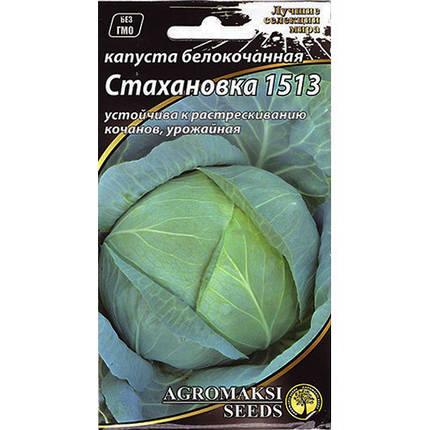 Насіння капусти середньоранньої, білокачанної «Стахановка 1513» (0,5 г) від Agromaksi seeds, фото 2