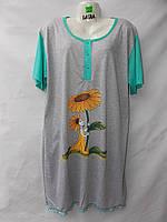 Жіноча сорочка нічна сорочка Батал (р-ри 56-64) оптом зі складу в Одесі.