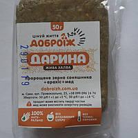 Халва из проросших семян подсолнечника с медом ТМ Доброеж, 50г, фото 1