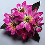 Бордюр хризантема, Пуансеттія 24см (100 шт. в уп), фото 2