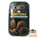 Свежие грибы Шиитаке в упаковке 200г, фото 3