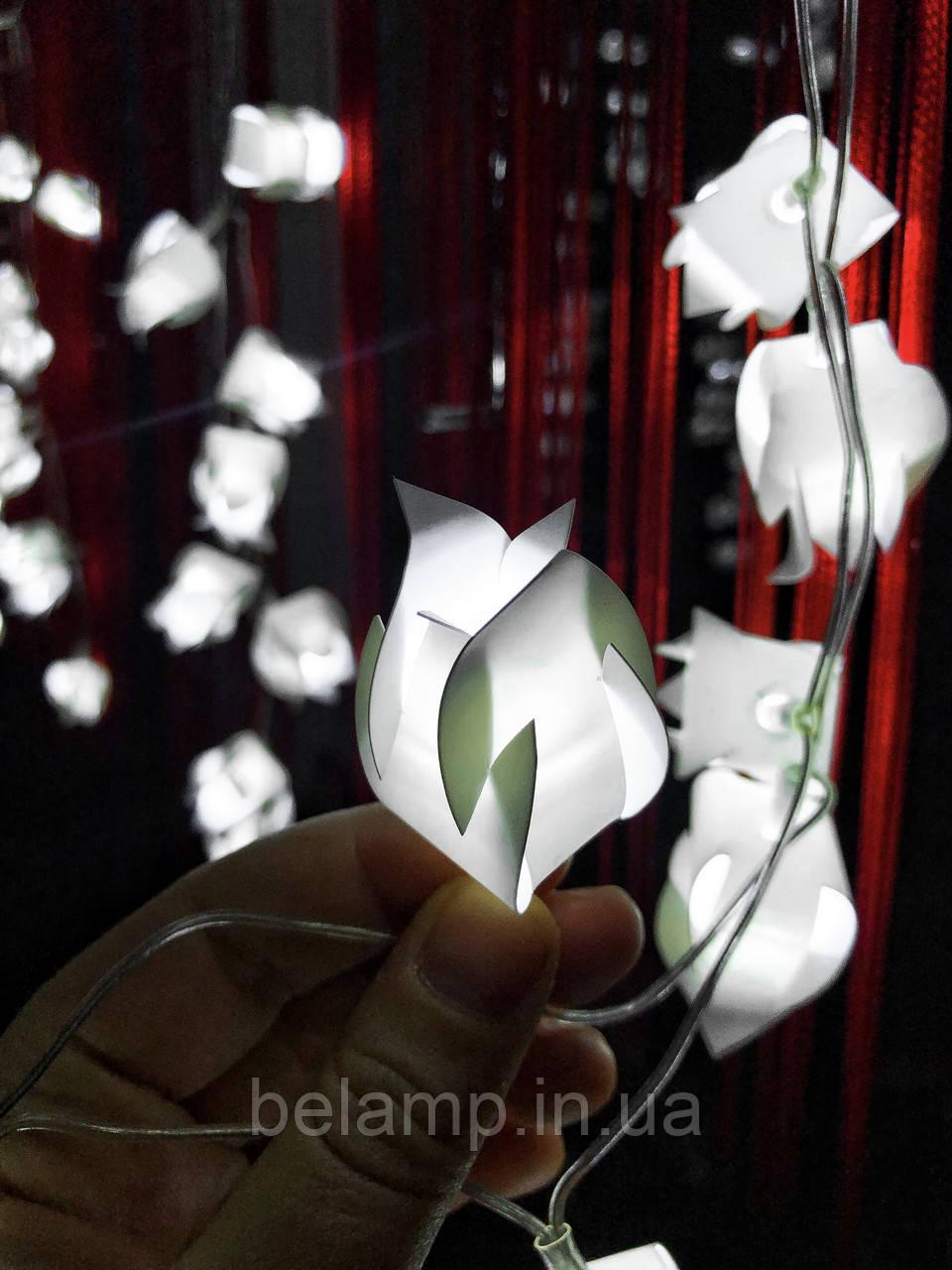 Гирлянда Штора-бахрома «Белые тюльпаны»