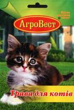 Трава для котов 20 г (АгроВест)