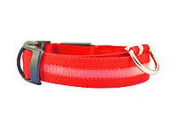 Светящийся ошейник для собак 1.5 см, длина: 30-36 см, диапазон регулировки: 6см (размер XS) Красный
