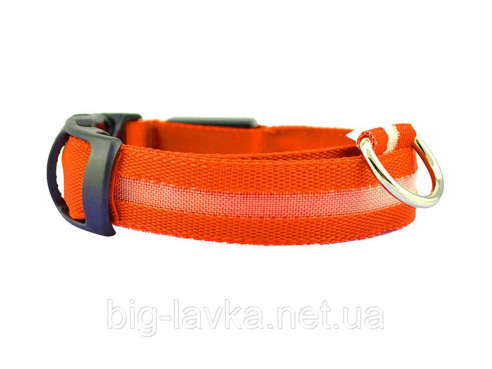 Светодиодный ошейник для собак  Оранжевый