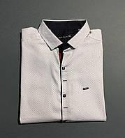 2ed8e11d023 Рубашки Мужские БАТАЛЫ — Купить Недорого у Проверенных Продавцов на ...