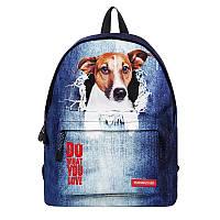 Рюкзак школьный с собакой Джек Рассел терьер . Running Tiger