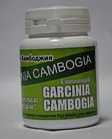 Garcinia Cambogia - Гарцинія Камбоджійська Екстракт для швидкого схуднення, фото 1