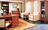 Стол письменный Росава СП-501 (БМФ) 1700х630х770мм, фото 3