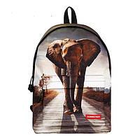Рюкзак школьный, городской Слон, фото 1