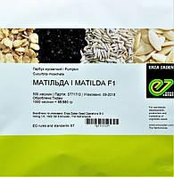 Тыква МАТИЛЬДА F1    MATILDA  Enza Zaden 500 шт, фото 1