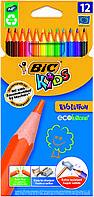 Цветные карандаши Кидс Эволюшн , 12 цветов