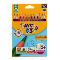 Цветные треугольные карандаши Эволюшн, 12 цветов