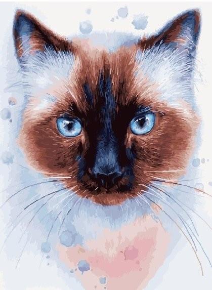 Картина по номерам Тайская кошка 40 х 50 см (BK-GX22407)