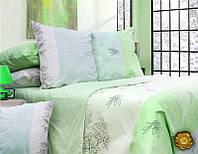 Комплект постельного белья Евро, Бязь (2-х сп.ЕБ0358)