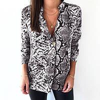 1f17ebb9617 Шифоновые блузки в Одессе. Сравнить цены
