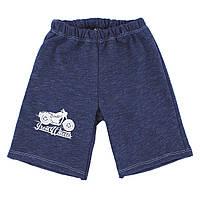 Детские шорты для мальчика, на рост - 80, 92, 104, 116 см. (арт.1-51н)