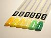 Гель лак Коди 01GY Зеленые и желтые оттенки, 8ml, фото 7
