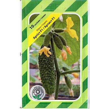 """Семена огурца ультрараннего, самоопыляемого """"Артист"""" F1 (10 семян) от Bejo, Голандия, фото 2"""