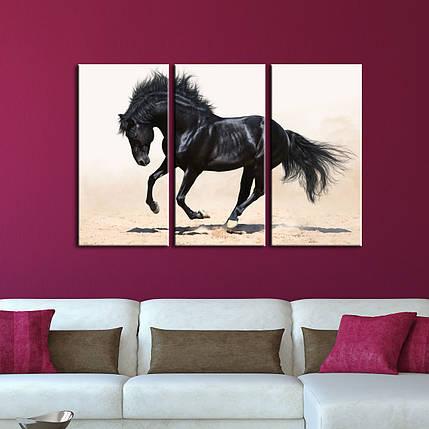 """Модульная картина """"Черная лошадь"""", фото 2"""