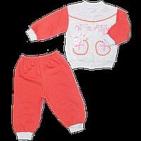 Детский спортивный костюм (теплый): кофта на кнопках с капюшоном, штаны начестрёх нитка р. 74-80, Ту