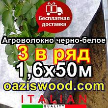 Агроволокно p-50g отвору 3 в ряд 1.6*50м чорно-біле Agreen італійське якість з перфорацією