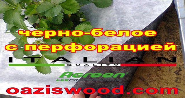 Агроволокно p-50g отверстия 3 в ряд 1.6*50м черно-белое Agreen итальянское качество с перфорацией