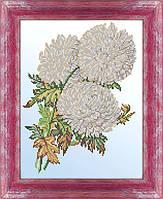 Схема для вышивки бисером Белые хризантемы