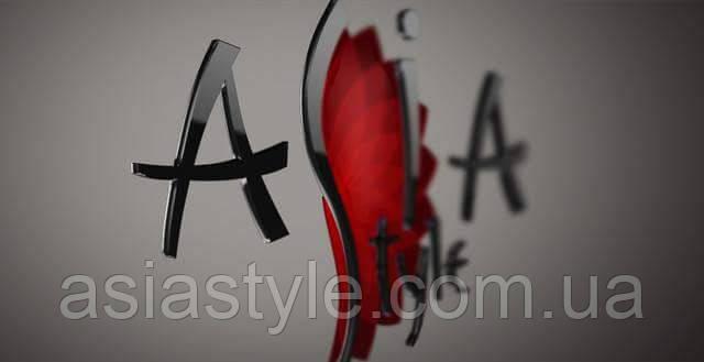 Франшиза от AsiaStyle.