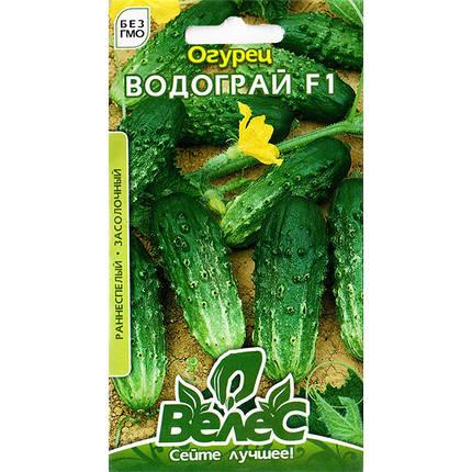 """Семена огурца урожайного, раннего, пригодного для засолки """"Водограй"""" F1 (0,5 г) от ТМ """"Велес"""", фото 2"""