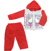"""Детский спортивный костюм (теплый): кофта на """"молнии"""" с капюшоном, штаны, на флисе, р. 80, 86, Турция  86 Красный"""