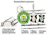 Агроволокно Черно-Белое AGREEN 1,07*100м 2отв в ряд. 50г\м.кв с перфорацией - 4сезона, фото 5