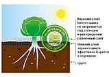 Агроволокно Черно-Белое AGREEN 1,07*100м 2отв в ряд. 50г\м.кв с перфорацией - 4сезона, фото 4