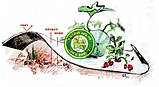 Агроволокно Черно-Белое AGREEN 1,60*50м 3отв в ряд. 50г\м.кв с перфорацией - 4сезона, фото 9